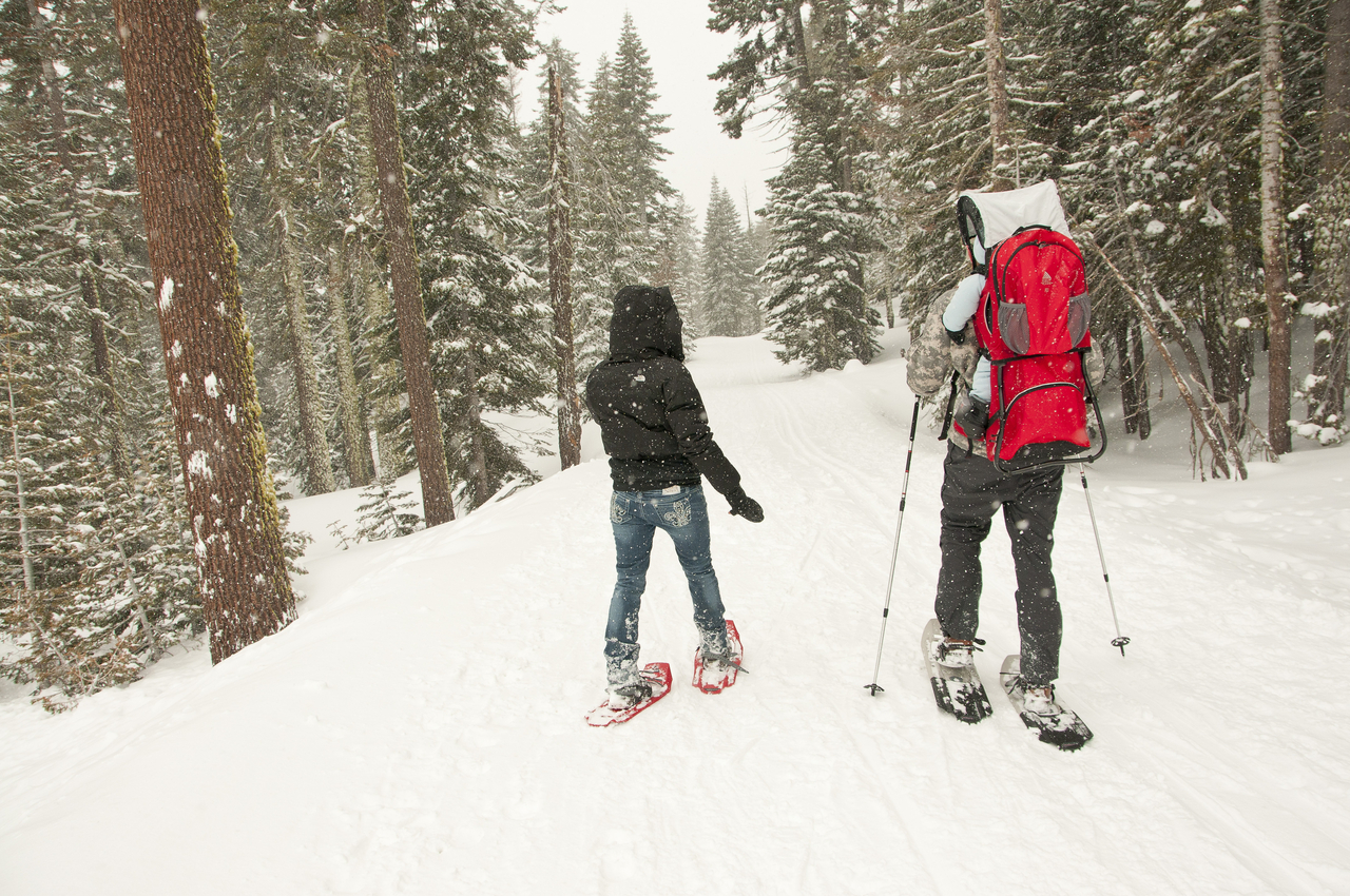 Badger Pass Snowshoers by Nancy Robbins