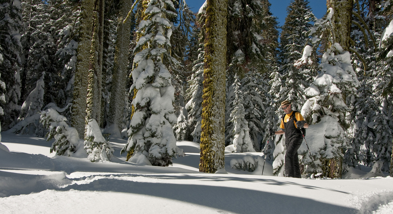 Badger Pass Snowshoer by Yosemite Conservancy/Gretchen Roecker